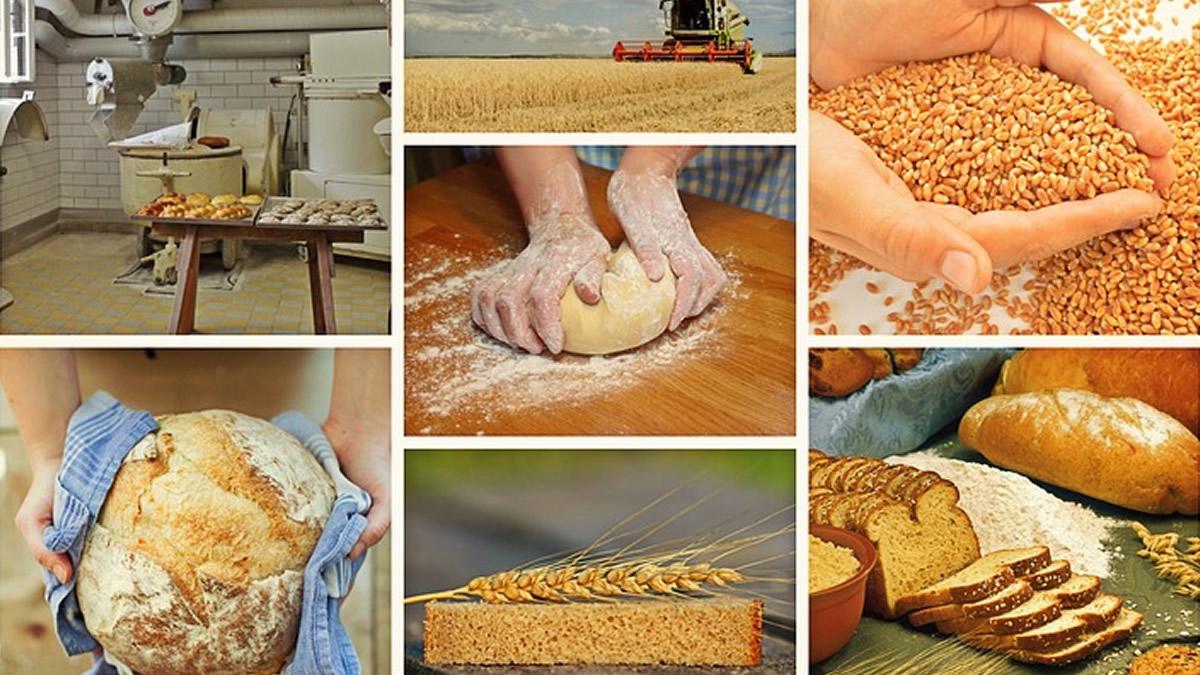 パン職人の仕事内容